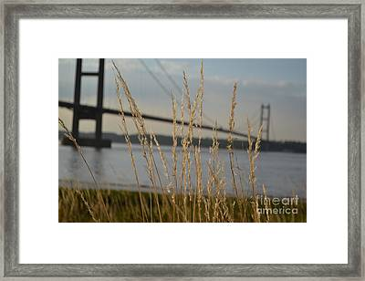 Wasting Time By The Humber Framed Print
