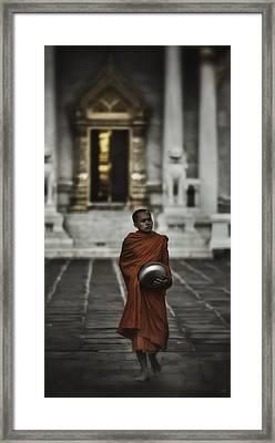 Wat Bencha Monk Framed Print by David Longstreath