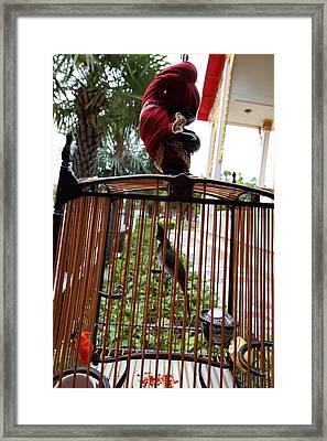 Wat Chalong - Phuket Thailand - 011310 Framed Print