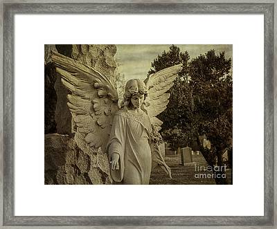 Watch Over Me Framed Print by Terry Rowe