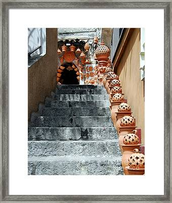 Watch Your Step 1 Framed Print by Mel Steinhauer