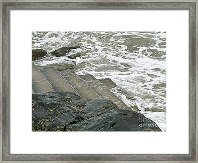 Framed Print featuring the photograph Watch Your Step by Brenda Brown