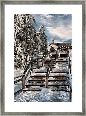 Watch Your Step Framed Print by Lois Bryan