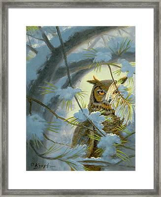 Watchful Eye-owl Framed Print by Paul Krapf