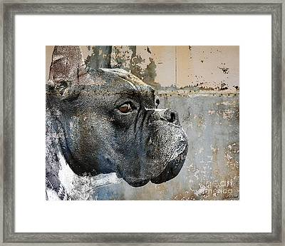 Watchful Framed Print by Judy Wood