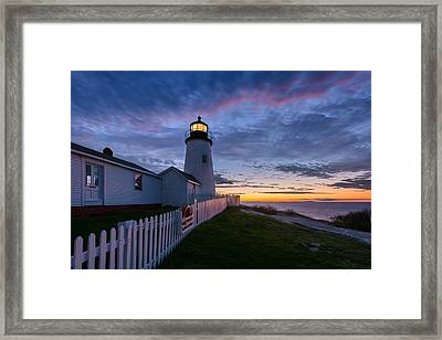 Watchful Sentry Framed Print by Michael Blanchette
