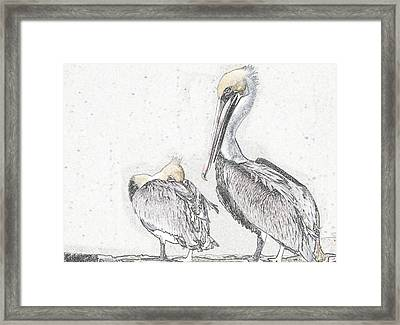 Framed Print featuring the photograph Watchin' Me by Laura Ragland