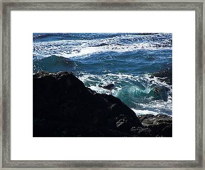 Watching As The Waves Pass By Framed Print