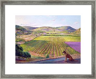 Watching From The Walls Old Provence Framed Print