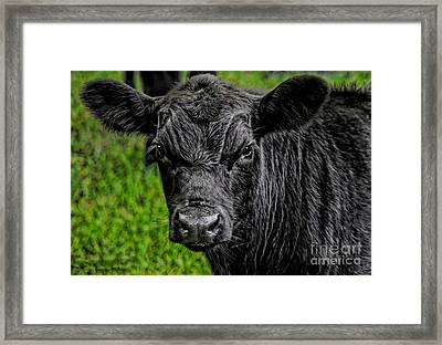 Watching Me Framed Print