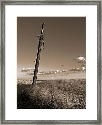 Watching Over The Sea King Framed Print