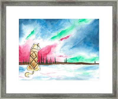Watching The Lights Framed Print by Sarah Glass