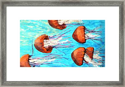 Watching The Orange Jelly Fish Framed Print by Rita Brown