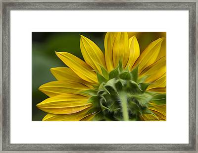 Watching The Sun Framed Print