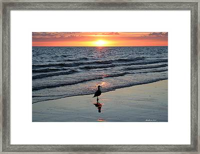 Watching The Sun Rise Framed Print