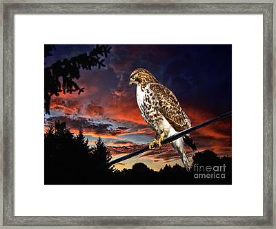Watching The Sun Set Framed Print