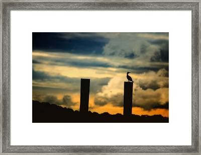 Watching The Sunrise Framed Print by Karol Livote