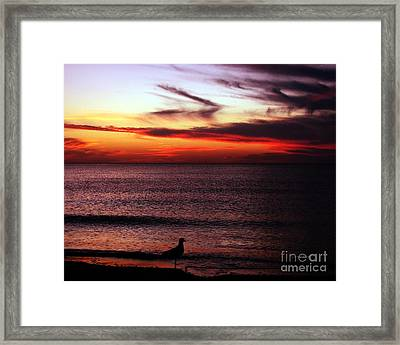 Watching The Sunset Framed Print by Doris Wood