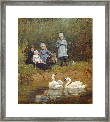Watching The Swans Oil On Canvas Framed Print