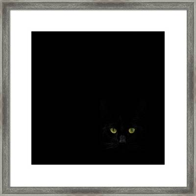 Watching You From The Dark Side Framed Print