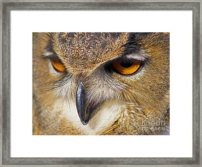 Watching You Framed Print by Jonathan Steward
