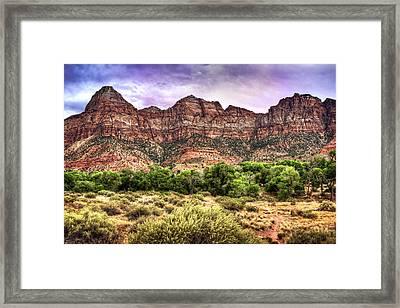 Watchman Trail - Zion Framed Print by Tammy Wetzel