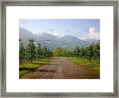 Framed Print featuring the photograph Water And Apple Juice by Giuseppe Epifani