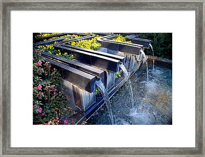 Water And Flowers At Ft Worth Botanic Gardens Framed Print