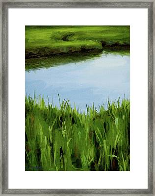Water And Grass Swirl Framed Print