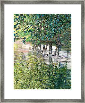 Water And Woodland Framed Print
