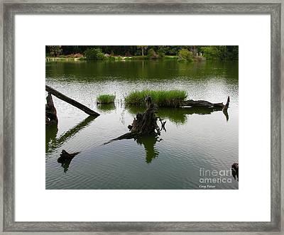Water Art Framed Print by Greg Patzer