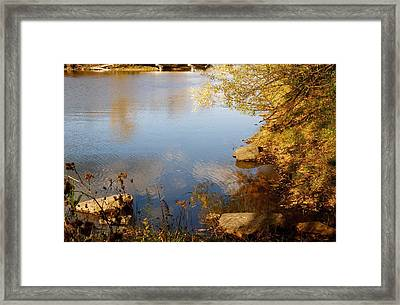 Water Beauty Framed Print by Jocelyne Choquette