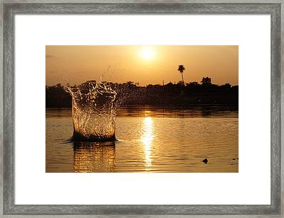Water Bomb Framed Print by Utkarsh Solanki