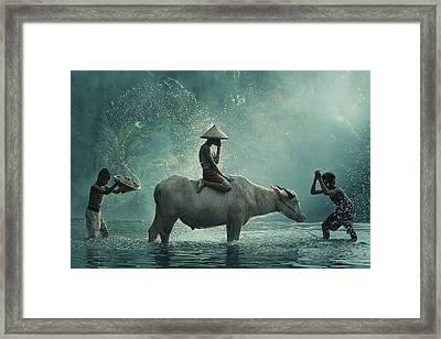 Water Buffalo Framed Print by Vichaya