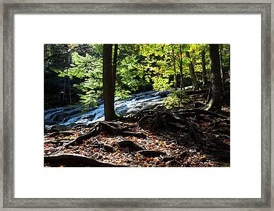 Water Cascades Down A Forested Slope Framed Print