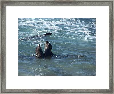 Framed Print featuring the photograph Water Chorus by Christine Drake