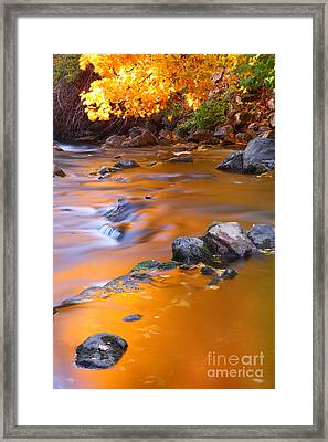 Water Color Gold Framed Print