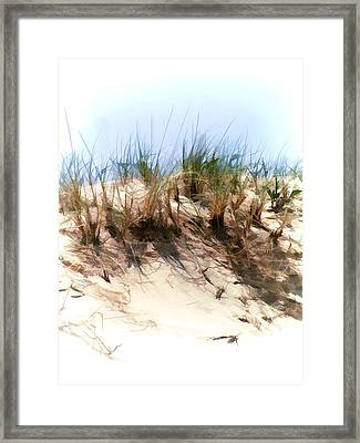 Water Color Sketch  Beach Dune Framed Print by Elaine Plesser