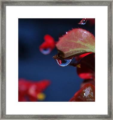 Water Coloured Rhapsody Framed Print by Marija Djedovic