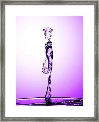 Water Drop Liquid Art 20 Framed Print by Paul Ge