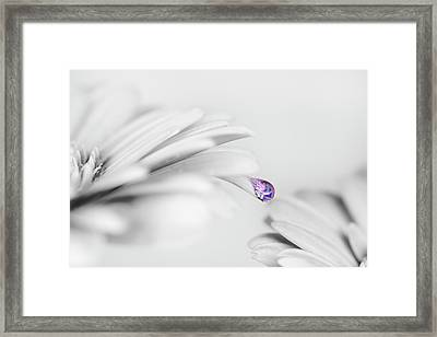 Water Drops Framed Print by Mikroman6