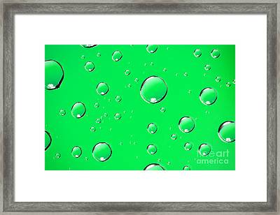 Water Drops On Green Framed Print by Sharon Dominick