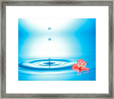 Water Drops Rising From Water Rings Framed Print