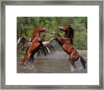 Water Fight Framed Print by Gregory Ambrose