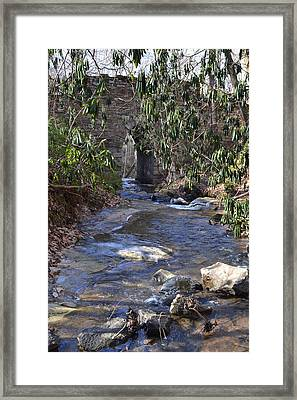 Water Flow To Poinsett Framed Print