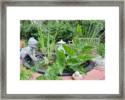 Water Garden 7 Framed Print by Bob Gross