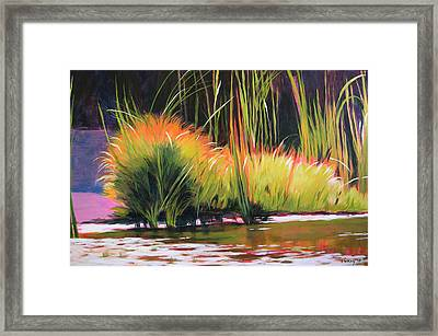 Water Garden Landscape 3 Framed Print by Melody Cleary