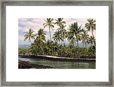 Water Inlet With Palms Framed Print