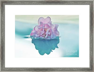 Water Light And Reflections Framed Print by Kaye Menner