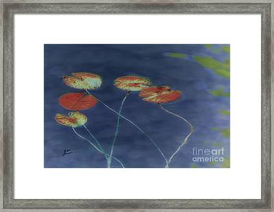 Water Lilies 2 Framed Print